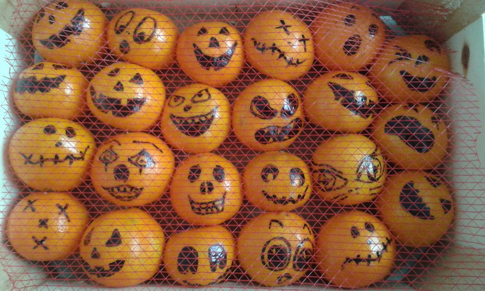 st 1 - Halloweenduik - Noord Aa Zoetermeer