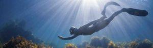 Freediver2 e1568393924629 300x94 - Opleidingen
