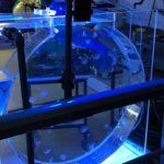 oceanium 1 150x150 - Activiteiten - Oceanium  (Ontdek Je Stekje)