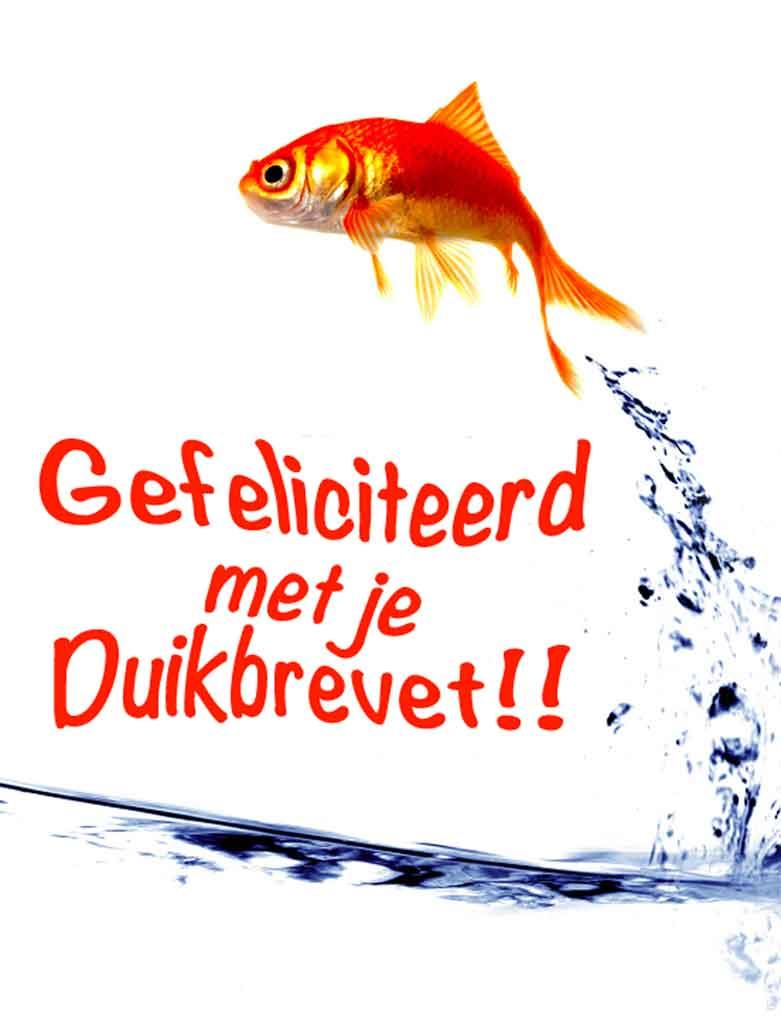 gefeliciteerd vis 1 - Blog en Nieuwtjes
