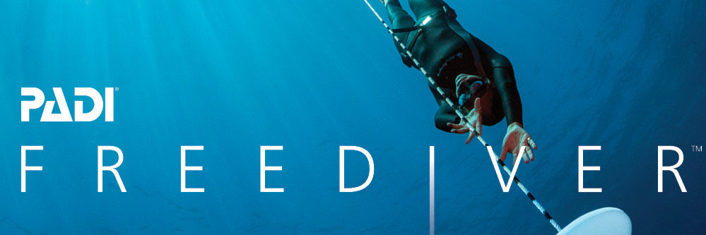 Freediver OnlineBanners Option1 EN rev01.184 e1566647977337 - Start PADI Freediver Cursus